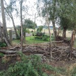 Totholzgarten
