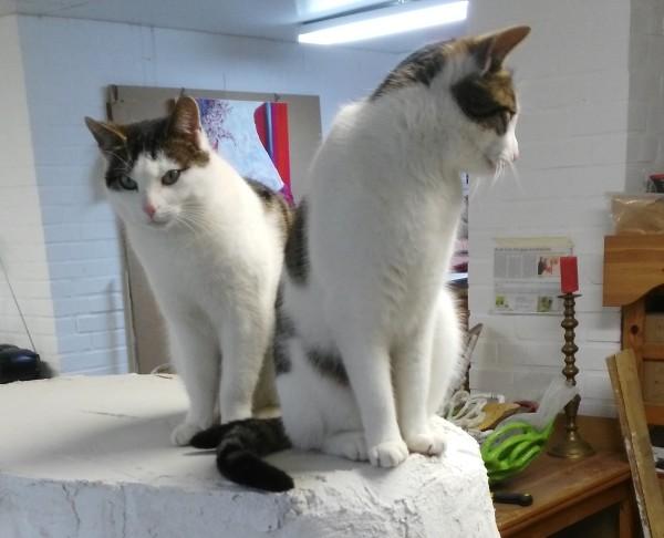 Pünktchen und Anton im Atelier